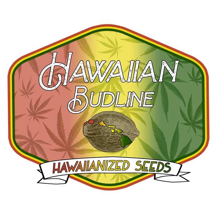 Hawaiian Budline